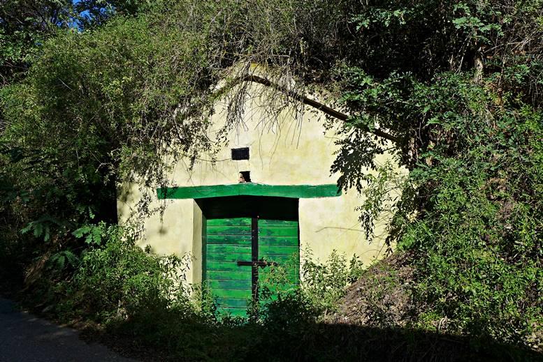 In der Kellergasse von Herrnbaumgarten