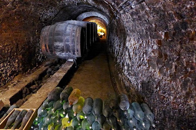 Weinkeller in der Kellergasse von Falkenstein
