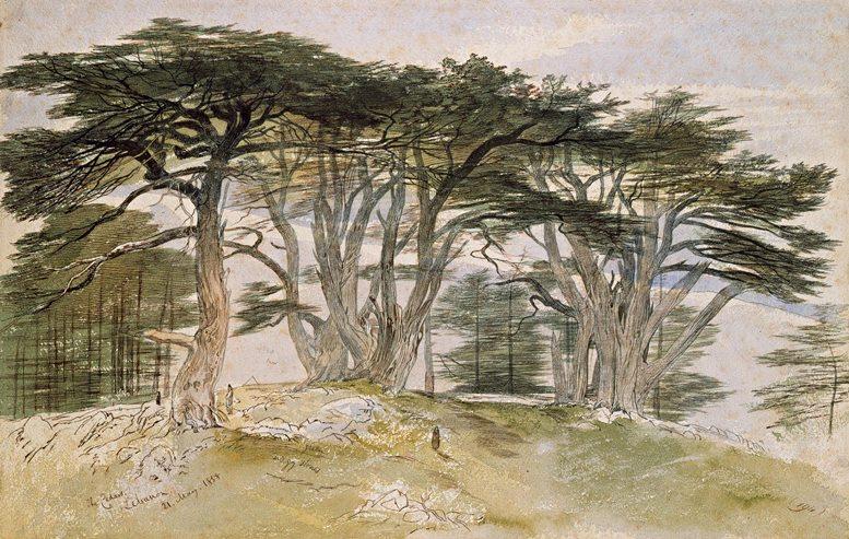 Edward Lear: Die Zedern des Libanon, 1858.