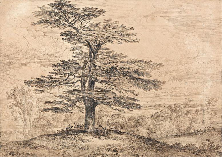James Ward: Zeder auf einer Anhöhe mit einer Hirschgruppe in ihrem Schatten, 1814