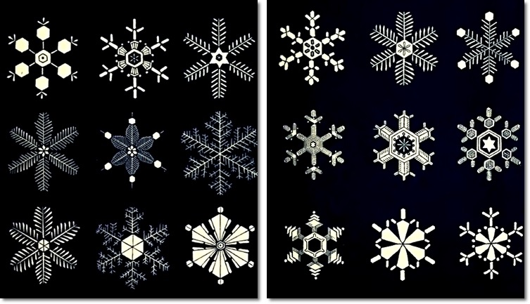 Aus: Israel Perkins Warren, Snow-Flakes: A Chapter from the Book of Nature, Boston (1863).