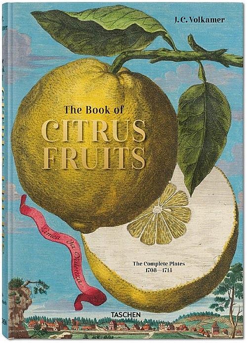 Buchcover. Frucht: Limea da Valenza / Vedute: Nürnberg Erlenstegen