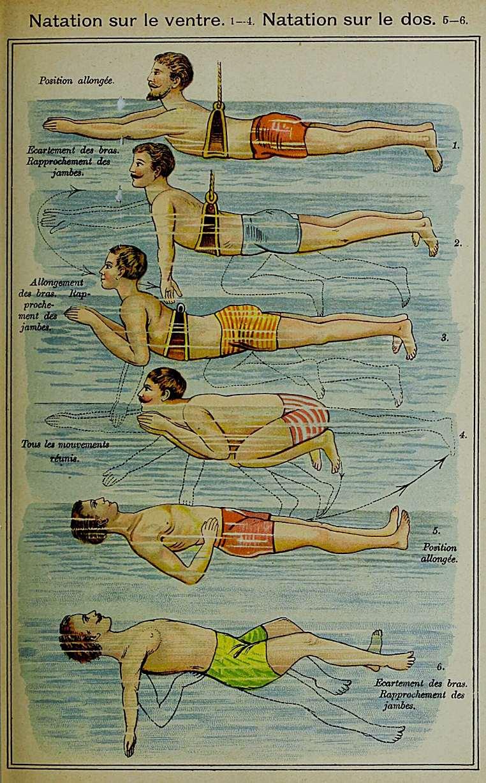 """""""Natation sur le ventre. Natation sur le dos"""" – Brustschwimmen und Rückenschwimmen. Aus: F.E. Bilz: La nouvelle médication naturelle. Paris 1899, Bd 2, S. 1201"""